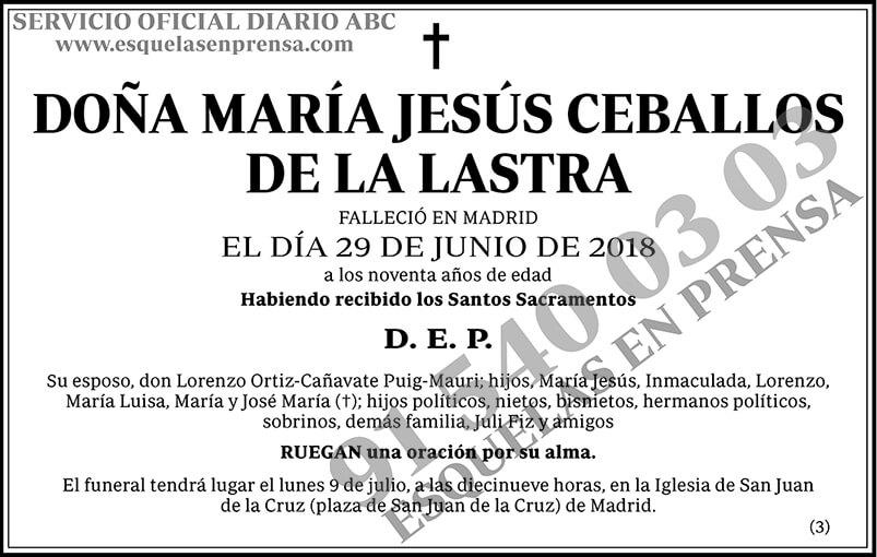 María Jesús Ceballos de la Lastra